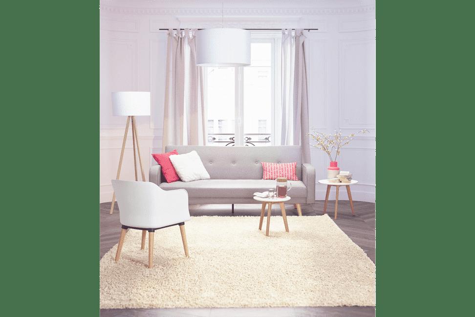 tapis poils longs dans appartement