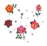 Sticker Des roses / Lot de 6 - Domestic multicolore en papier